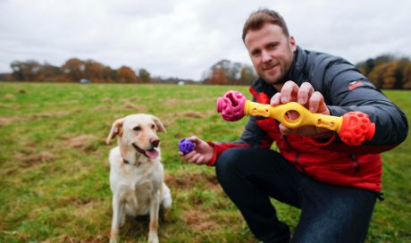 Irish invention to be showcased at Crufts – after dog ate couple's wedding album
